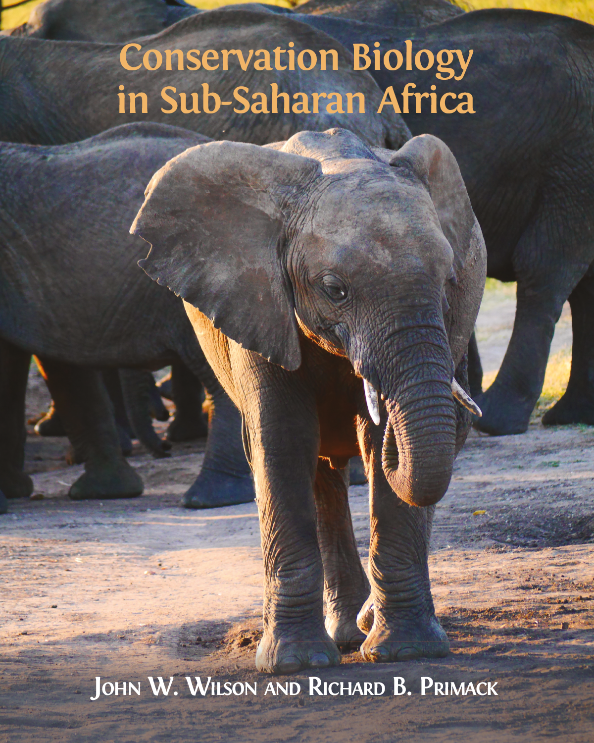 Conservation Biology In Sub Saharan Africa Open Book Publishers